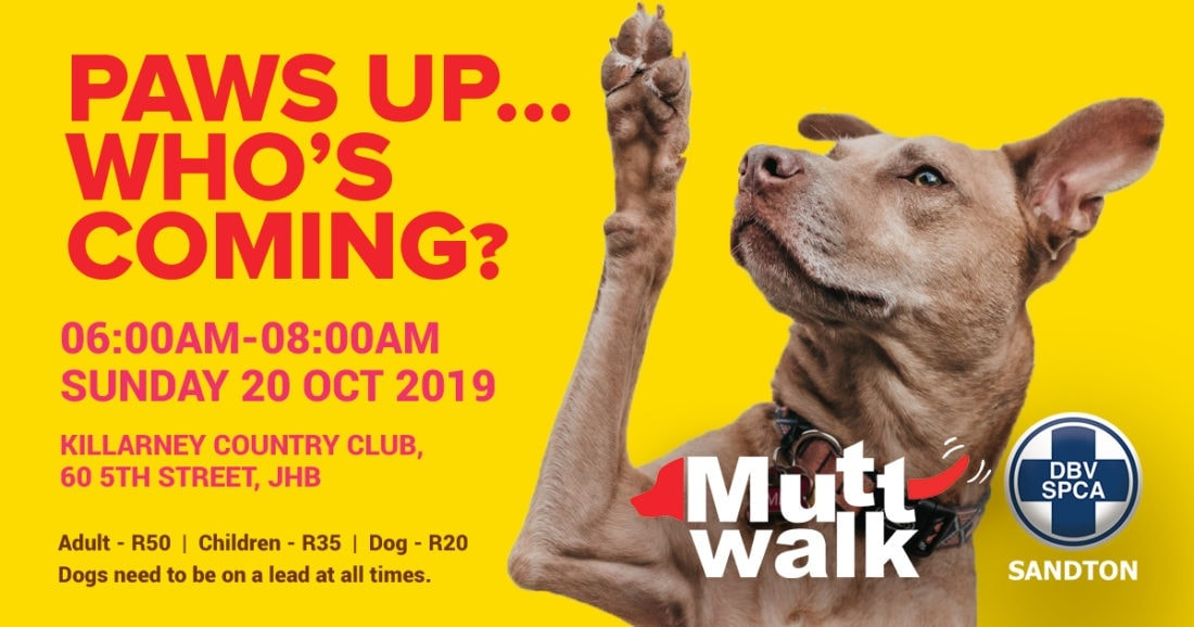 Sandton SPCA Mutt Walk in October
